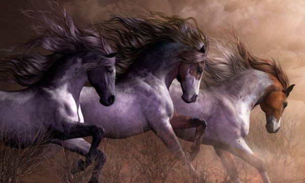 Sueños con caballos dependiendo del color