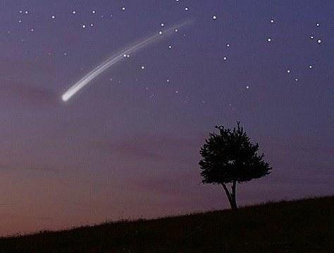 star13-710895