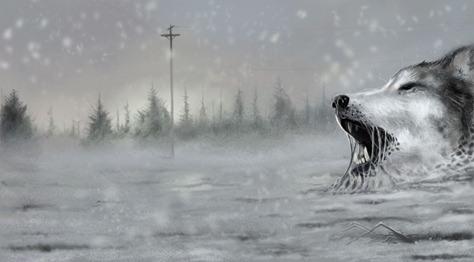 Storm-Wolfs-Dream