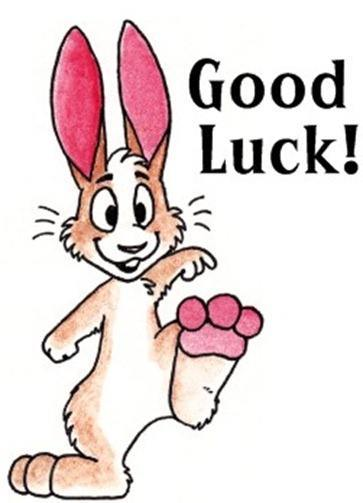 lucky_rabbit_postcard-p239351103948220177z85wg_400