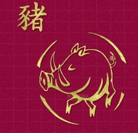 cerdo-zodiaco