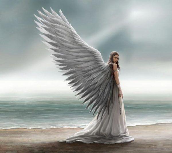 cual-es-tu-angel-protector