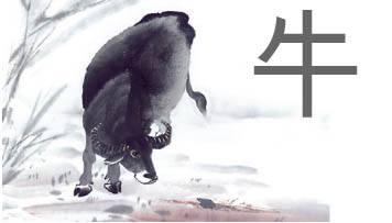 horoscopo-chino-2016-del-amor-buey