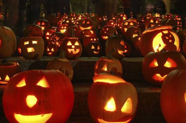 historia-de-halloween-calabaza