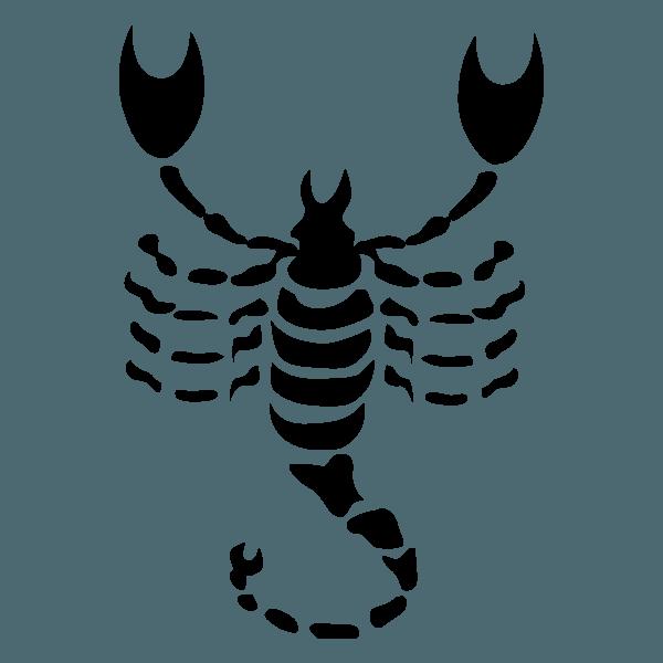 el-amor-para-el-signo-de-escorpio-amistad