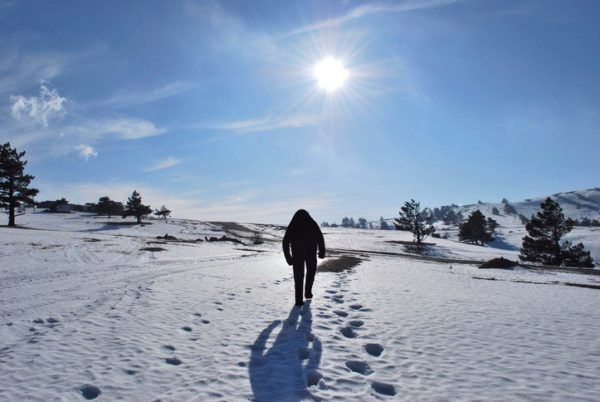Yeti historia del originen y leyenda del abominable hombre de las nieves