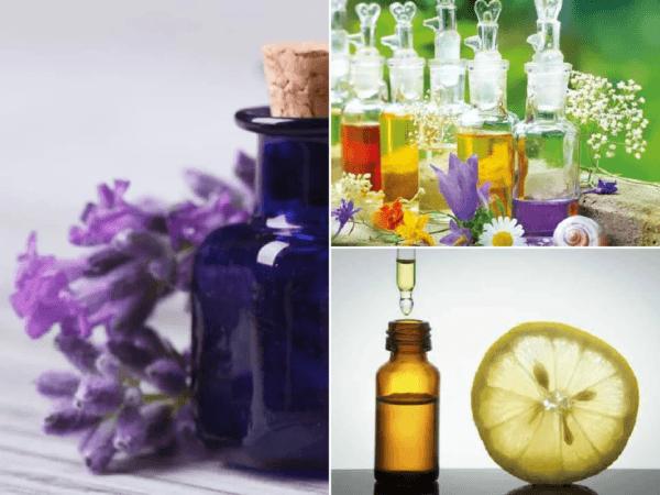 aromaterapia-con-aceites-esenciales.png