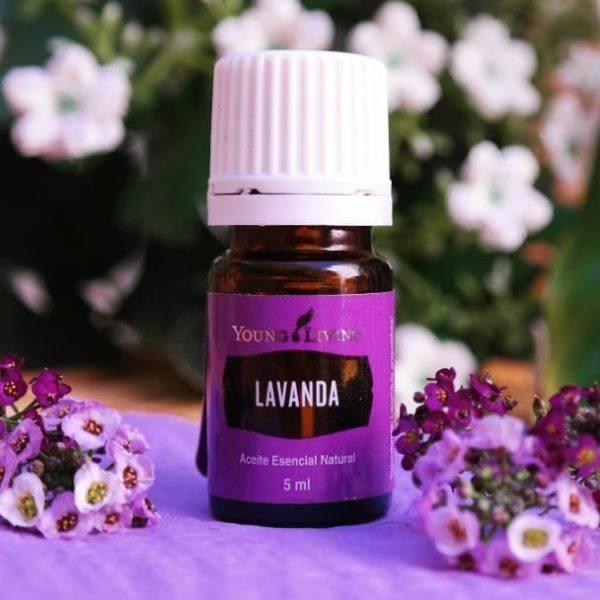 aromaterapia-con-aceites-esenciales-propiedades-aceites-esenciales-tienda-lavanda-instagram-aceites-esenciales-10