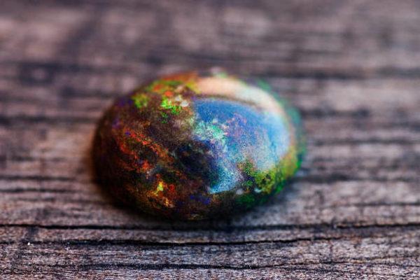 Que es rainbow tree opalo