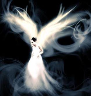 fotos-angeles-p