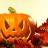 Halloween y su simbolo de la Calabaza 2013