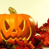 Halloween y su simbolo de la Calabaza 2014