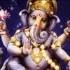 Elefante suerte