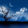 Calendario Lunar 2015 Agosto