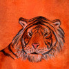 Horóscopo Chino: Tigre 2009