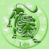 Caracteristicas de Leo