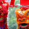 Año Nuevo Chino; La Danza del Dragón