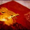 Horóscopo Chino: La Rata 2009