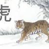 El Tigre del horoscopo chino y los elementos