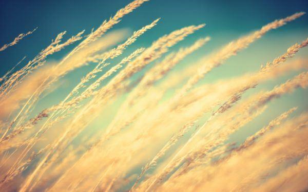 sentir-viento-sueños