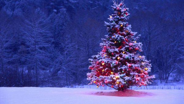 tradiciones-de-navidad
