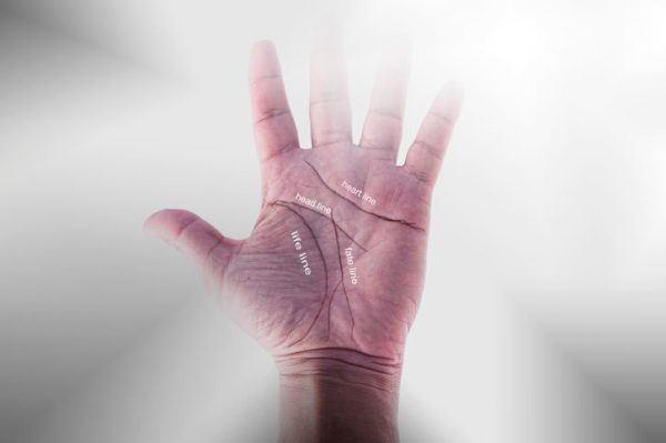 Lineas de la mano