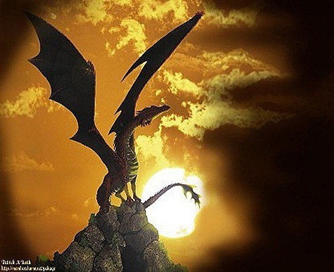 dragon41