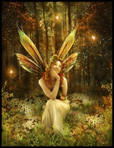 Fairies-fairies-171513_300_388