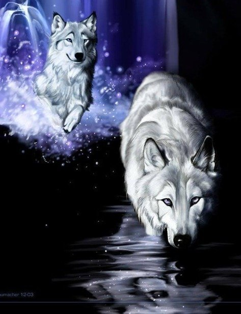 white-wolf-fantasy-wolves-9128653-600-784