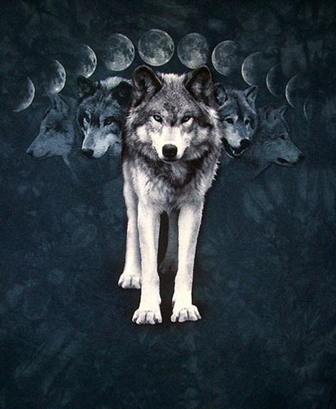 wolf_moon600
