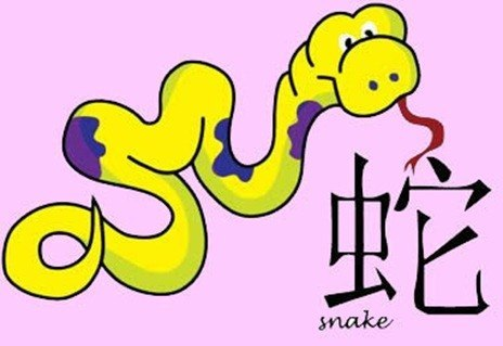 chinese_snake_sign