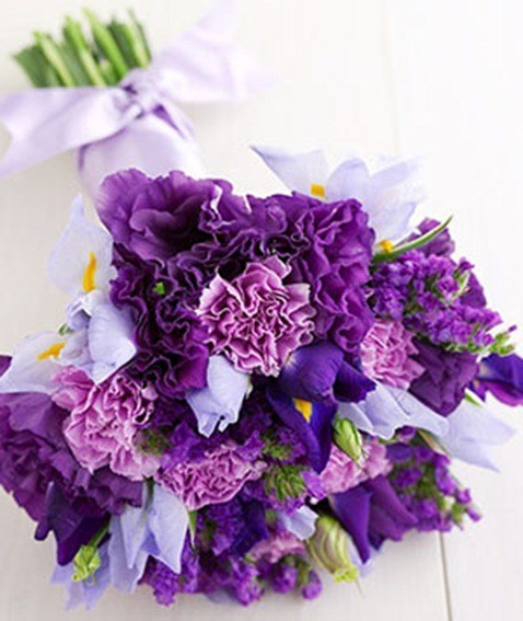 irises-statis-flowers-3_300