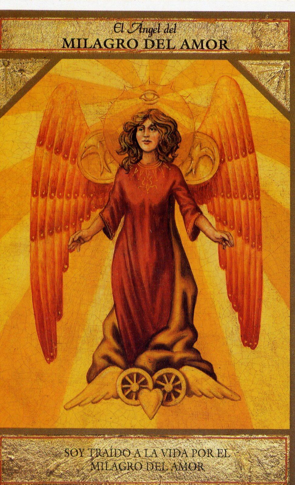 el angel del milagro del amor