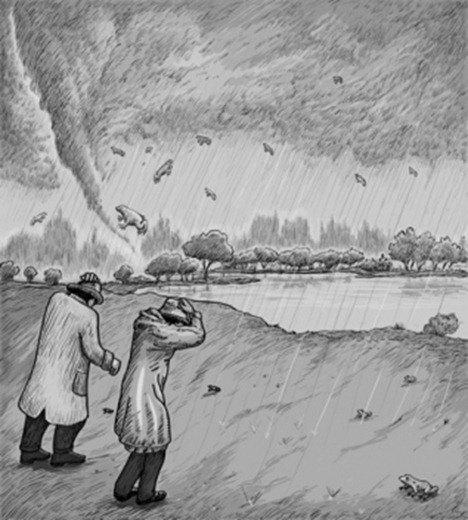 raining_frogs