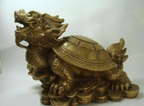 colocar-la-tortuga-de-la-suerte-en-casa