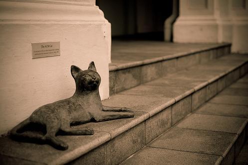 fantasmas-de-navidad-bancos-de-la-catedral-de-barchester-gato