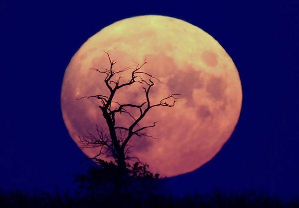 calendario-lunar-2014-Diciembre