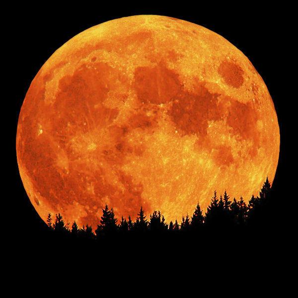 Calendario lunar octubre 2018 for Calendario lunar junio