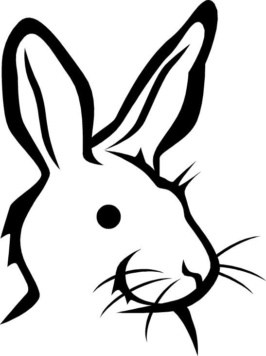 horoscopo-chino-2015-el-conejo-salud