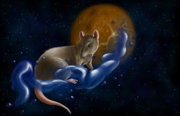 horoscopo-chino-2015-la-rata