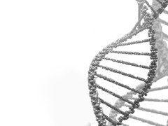 Reproducción asistida con Diagnóstico genético preimplantacional