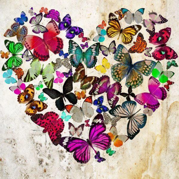 Mariposa-simbolo-del-amor-2016