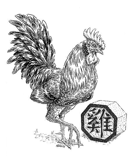 horoscopo-chino-el-gallo