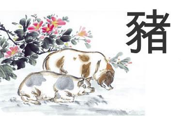 horoscopo-chino-2016-del-amor-cerdo