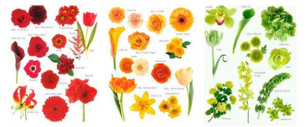 significado-de-71-flores