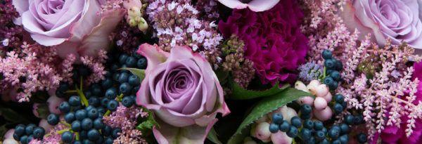 sonar-flores-segun-cada-tipo