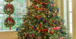 Cuál es el significado de los Árboles de Navidad