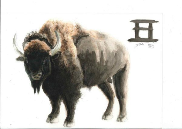 horoscopo-chino-buey-2017-salud