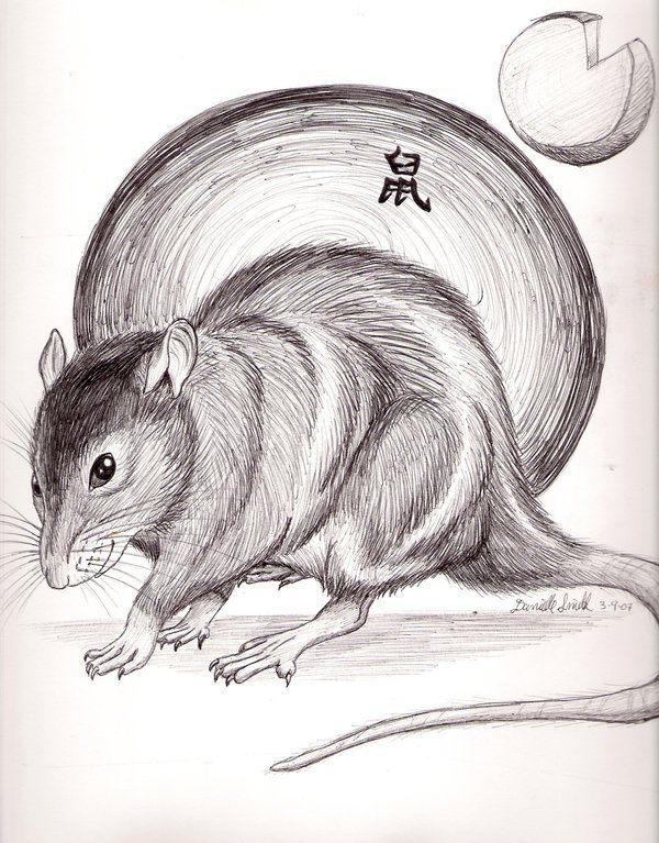 horoscopo-chino-la-rata-2017-amor