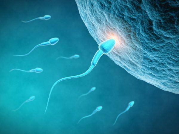 Significado de la mano de fatima o jamsa fertilidad